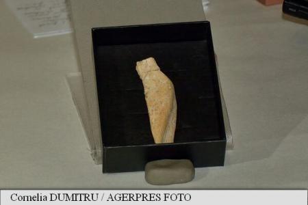 Venus din Poiana Cireșului